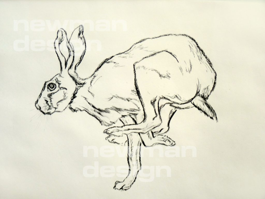 Hare running - Charcoal