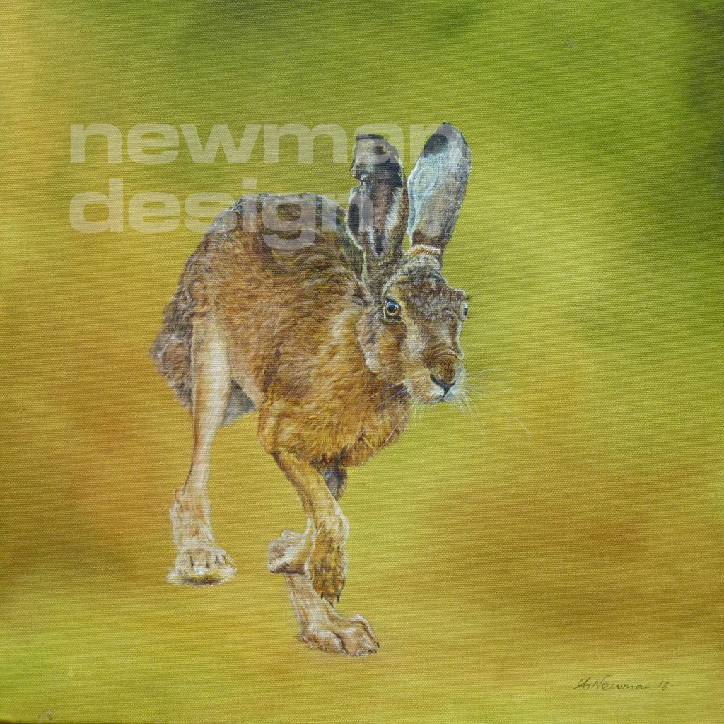 Lolloping Lepus - Hare painting
