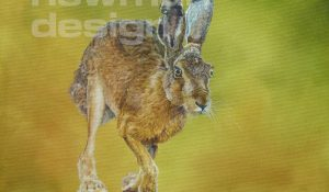 Hare – oil painting