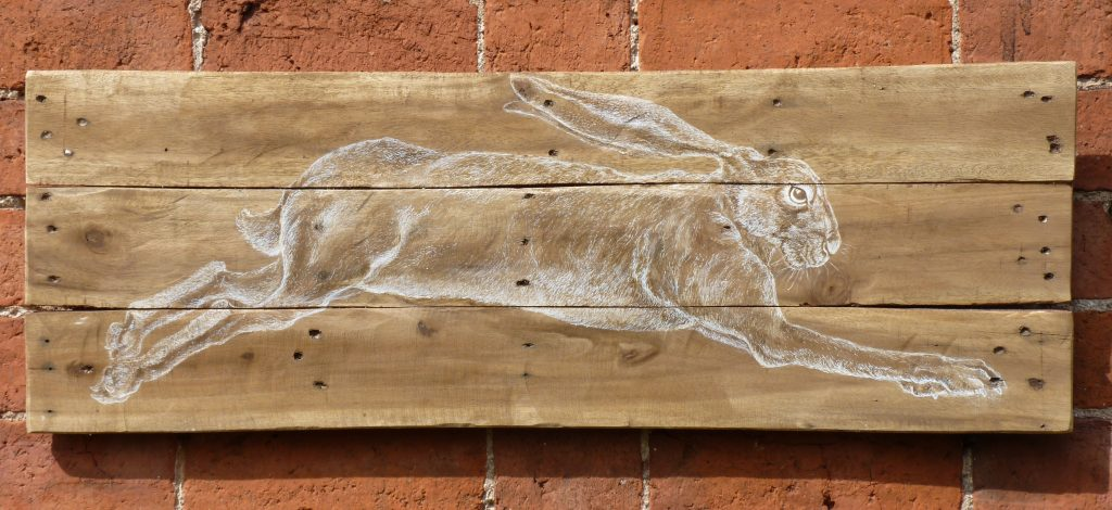 Hare on reclaimed wood