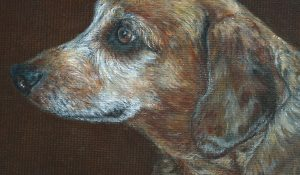 Dachshund – oil painting